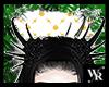 토리 Flower Horn