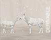 *M* Deers family