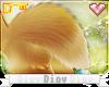 *D* Ari Tail V4