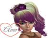 Priscilla Purple Expolsi