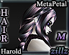 [zllz]M Harold Purple Ch
