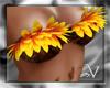 ~V Sunflower Top