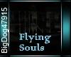 [BD]FlyingSouls