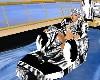tiger lounge pool float