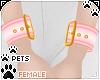[Pets] Wristcuff   rose
