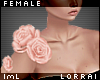 lmL Kai Roses 1