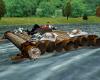SB-4 Poses Native Raft