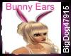 [BD] Bunny Ears
