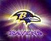 Baltimore RavensChaps(F)