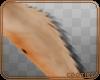 💎 Abby | Leg Fur