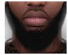 Noire Delight Beard