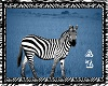 Blue Zebra Picture