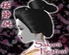 Sakura Geisha Hair