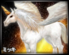 ! Pegasus Horse #Riding