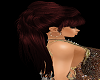 Hair Extension Auburn