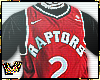 Toronto Raptors Kawhi