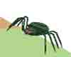 *CJ*LacySpider(green)