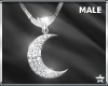 SF  Moon Necklace