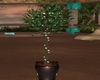 Potted Plant with Lights