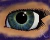 Green Jasper Eyes F