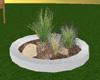 s~n~d grass plants