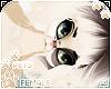 [Pets] Fudge | Odalisu