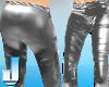 Lycralicious Pants Metal