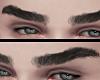 Natural Eyebrow