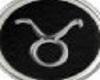 Taurus Zodiac Earring