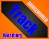 Westbury Academy Track