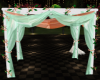 Mint with Peach Canopy