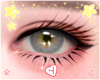 ♪ Jewel 2Tone I Grey