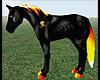 ASH fire horse