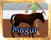 !(MAG)A BABY HORSE RUY