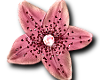 Pink Flower with glitter