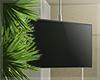 Tropicana Ceiling TV