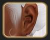 ~SD~ RUBY EARRINGS
