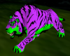 Tiger Purple
