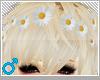 ♡daisy clips♡
