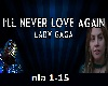 L.GAGA-Never love again