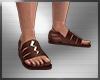 Zues Brown Sandals