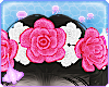 Oxu | Siamese Flowers