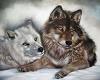 snow wolf swing 1