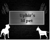 Uphir's lil pet collar