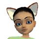 Chocolate Fox Ears