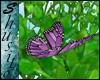 """.Flying Butterfly.""Purp"