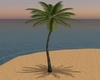 Add on Animae Palm Tree