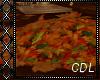 !C* Fallen....... Leaves