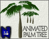 (N) Animated Palm Tree