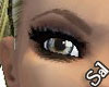 Light Brown Arched Brows